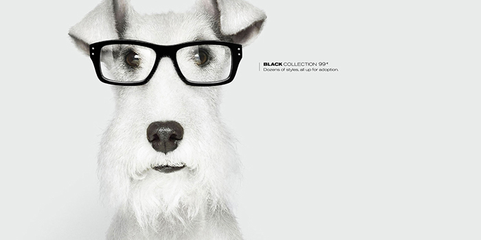 GrandOptical Grand Optical lunettes opticien centre commercial Bercy 2