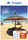 Profitez des promotions sur les voyages avec Carrefour Voyages à Terre Ciel à Chelles