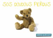 Grand Quetigny Doudous Perdus
