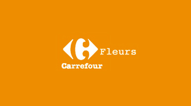 Carrefour Voyages Services centre commrercial Grand Quetigny