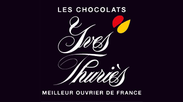 Small_yves-thuries_logo